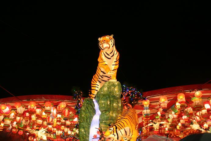 ランタンフェスティバル 虎