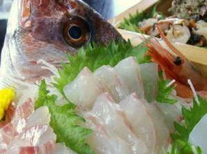 石川県 氷見市 民宿 青柳 日本海 お料理